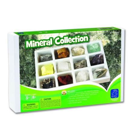 Kit paleontologie - Minerale Educational Insights