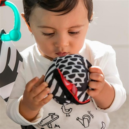 Baby einstein - salteluta de activitati bold new world, Bright Starts*