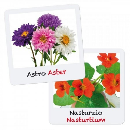 Set creativ pentru copii Gioca Green plantare si crestere Flori Quercetti*
