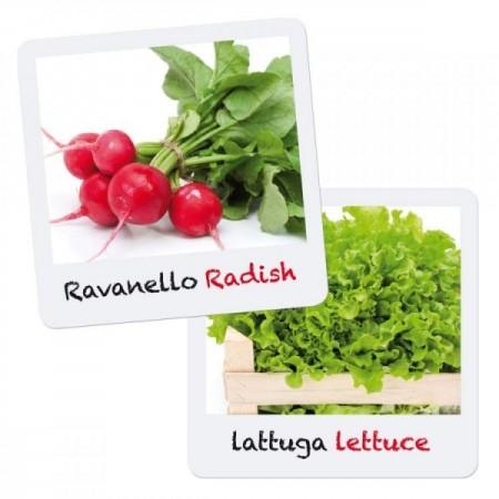 Set creativ pentru copii Gioca Green plantare si crestere Salata Ridiche Quercetti*