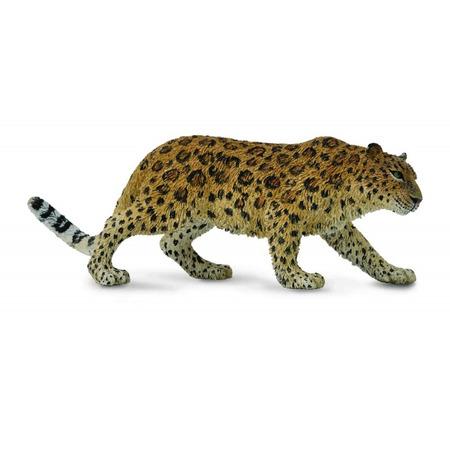 Figurina Leopard de Amur XL Collecta*