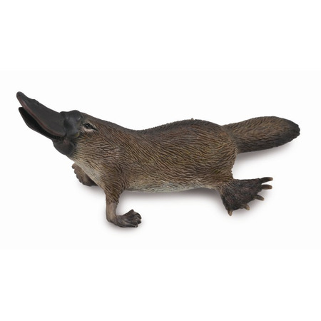 Figurina Platypus M Collecta*