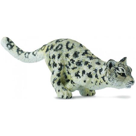 Leopard de zapada Pui - Collecta*
