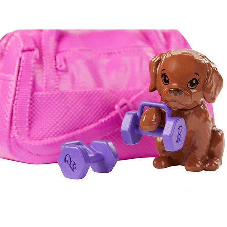 Set Barbie by Mattel Wellness and Fitness papusa cu figurina si accesorii GJG57*